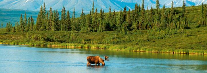 Alaska - Landschaft
