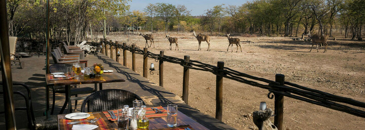 Deck des Ongava Tented Camp