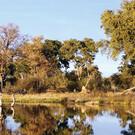 Das Grüne Herz Botswanas
