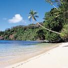Island Time Fiji