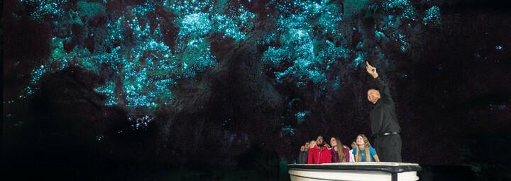 Waitomo Glowworm Höhlen