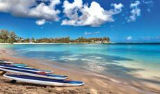 Inselrundfahrt Oahu