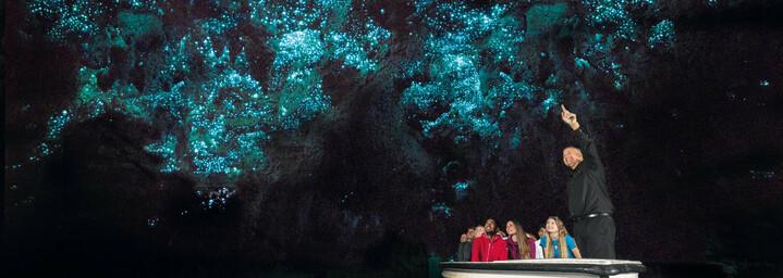 Glühwürmchenhöhle von Waitomo in Neuseeland