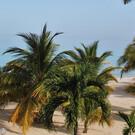 Jamaica erleben