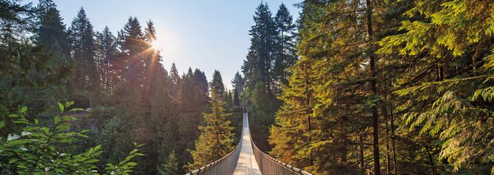 Capilano Suspension Bridge in North Vancouver