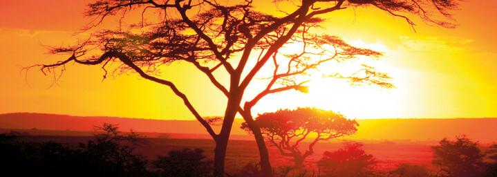Sonnenuntergang im Serengeti Nationalpark
