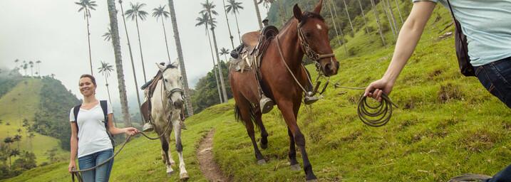 Mit Pferden im Cocora-Valley Armenia Kolumbien
