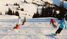 Ski Safari Whistler & Vancouver