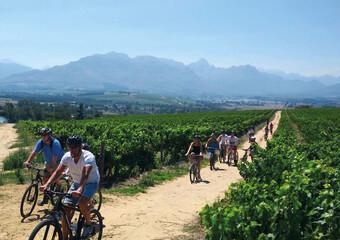 Fahrradtour durch das Weinland