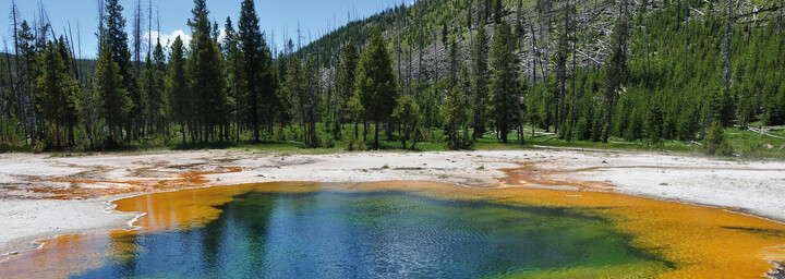 Yellowstone Nationak Park