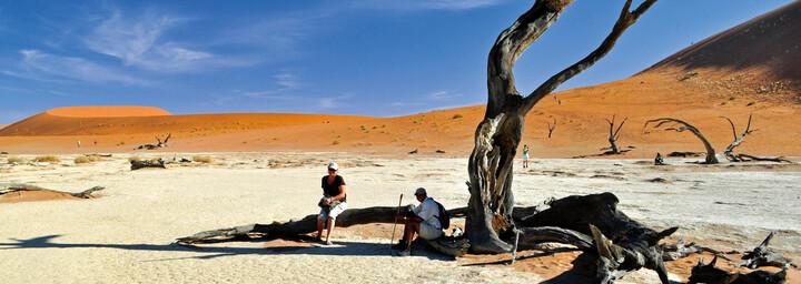 Dead Vlei Namib Wüste