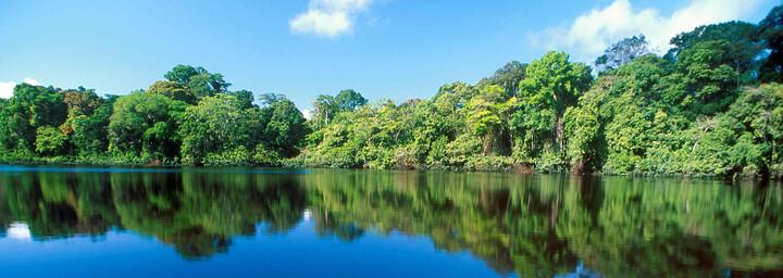 Tortuguero Nationalpark in Costa Rica