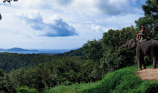 Natur pur im Khao Yai Nationalpark