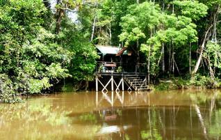 Ecuador Reisebericht - Tapir Lodge im Cuyabeno Naturreservat