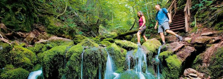 Wanderer im Fundy Nationalpark, New Brunswick