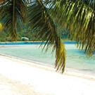 Seychellen – Inseln Mahé & Praslin