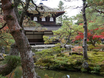 Reisebericht Japan : Tempel und Garten in Kyoto