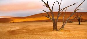 Kontrastreiches Namibia inkl. Flug