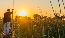 Botswanas Wildnis entdecken inkl. Flug