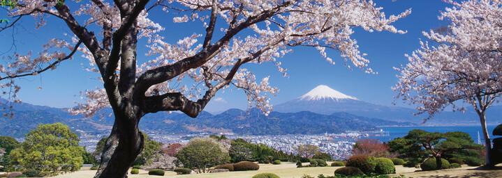 Fuji Hakone Nationalpark