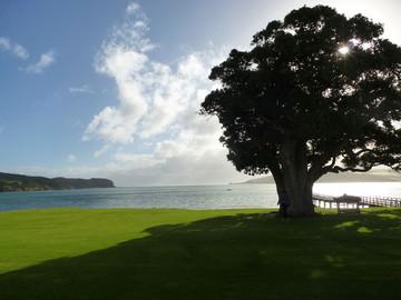 Neuseeland Reisebericht - Ausblick im Copthorne Hotel & Resort Hokianga