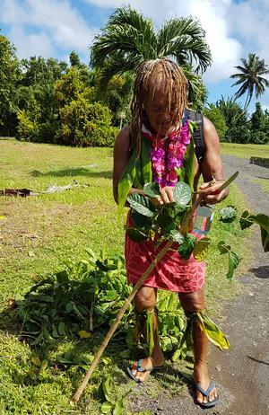 "Cook Inseln Reisebericht - Nature Walk mit ""Pa"""