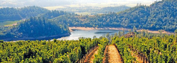Weinregion Napa Valley