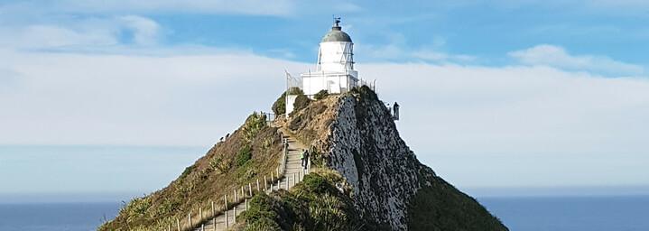 Neuseeland Reisebericht: Curio Bay Nugget Point Leuchtturm