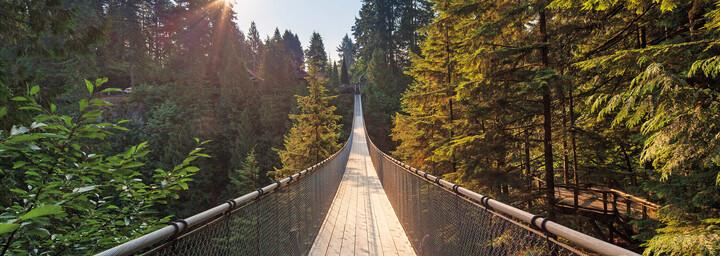 Vancouver Capilano Brücke