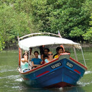 Northern Mangrove Tour