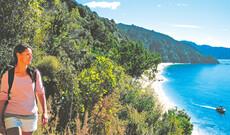 Katamarantour im Abel Tasman Nationalpark