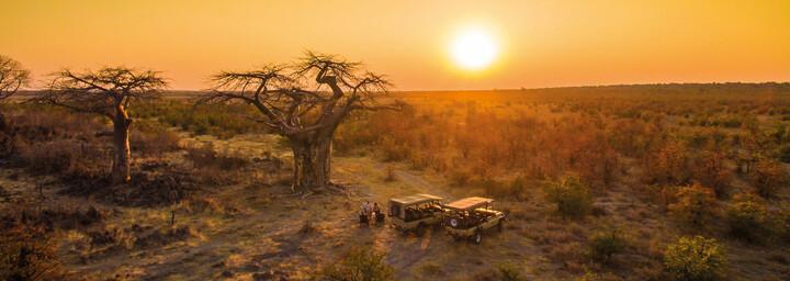 Ghoha Hills Savuti Lodge Baobab Sonnenuntergang