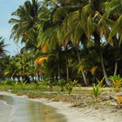 Panama Drive & Relax