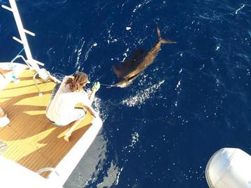 Reisebericht Seychellen - Fischfang
