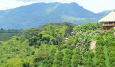 Faszinierendes Kolumbien