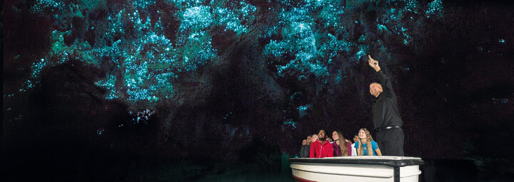 Waitomo Glühwürmchenhöhle