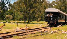 Rovos Rail Zugreise ab Pretoria/bis Walvis Bay/Swakopmund