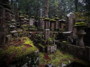 Reisebericht Japan: Friedhof im Zedernwald auf dem heiligen Berg Koya