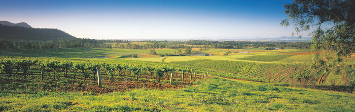 Hunter Valley Panorama