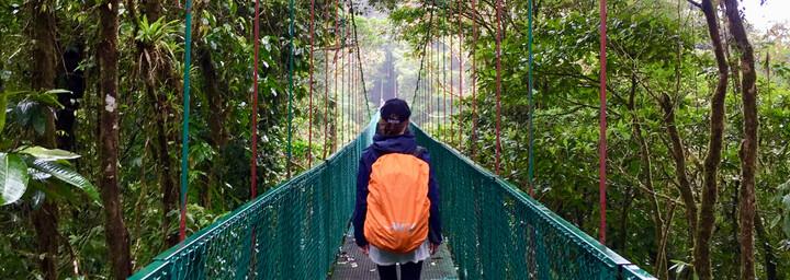 Monteverde Nationalpark Brücke