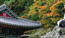 Tempel-Übernachtung in Seoul