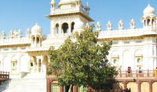 Transfers ab/bis Jodhpur