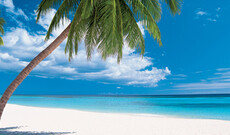Traumhafte Dominikanische Republik