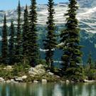 Von den Rockies bis zum Pazifik