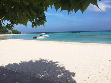 Barbados Reisebericht - Pebbles Beach