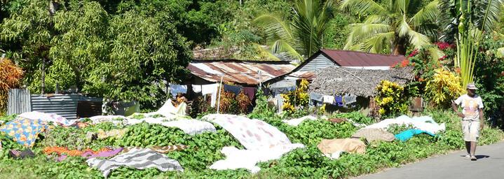 Madagaskar Reisebericht: Inselleben Madagaskar