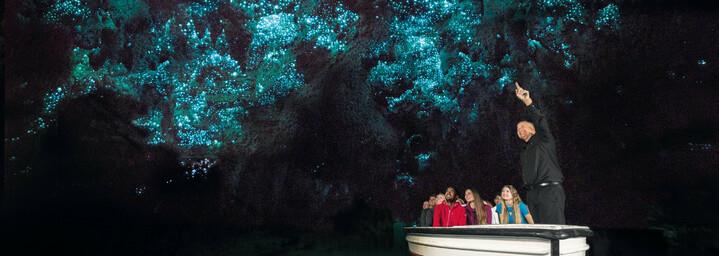 Glühwürmchen in den Waitomo Caves Neuseeland Nordinsel