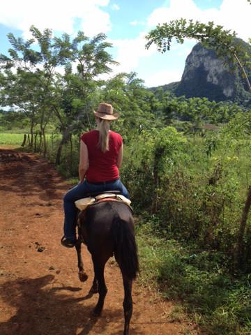 Kuba Reisebericht: Ausritt mit dem Pferd durch das Viñales Tal