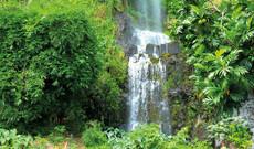 Naturwunder La Réunion