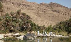 Große Oman-Rundreise